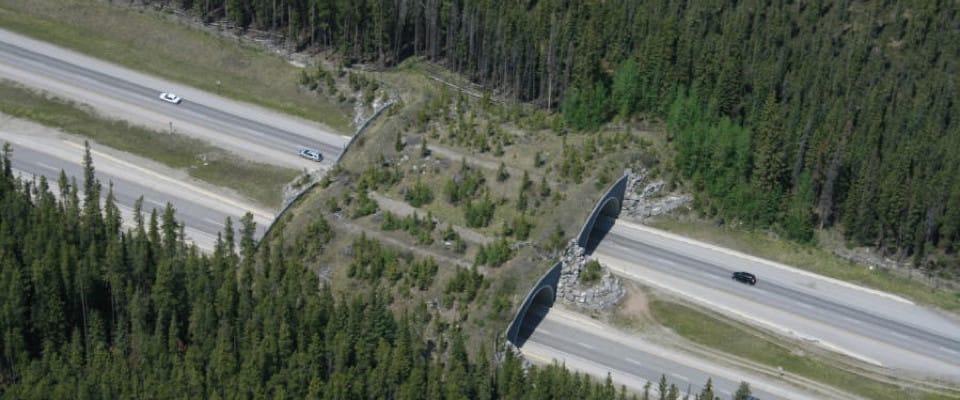 overpass_aerialb960x400