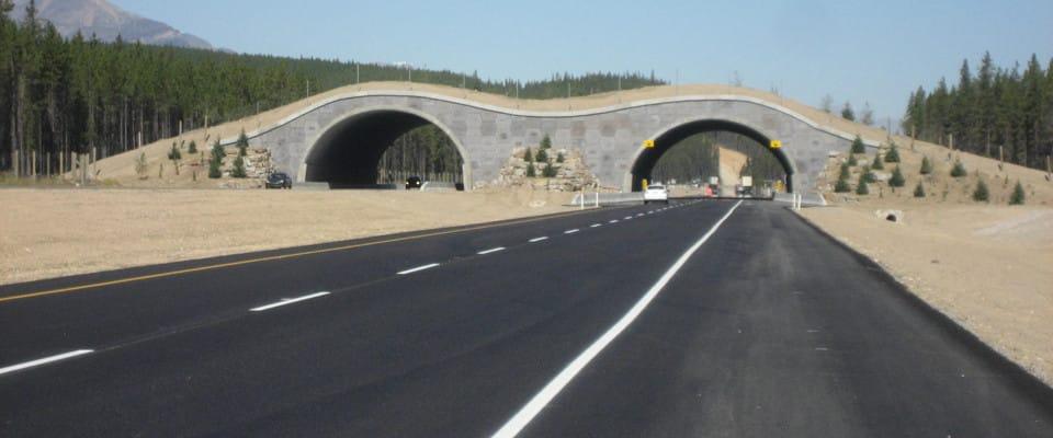 overpass_road960x400