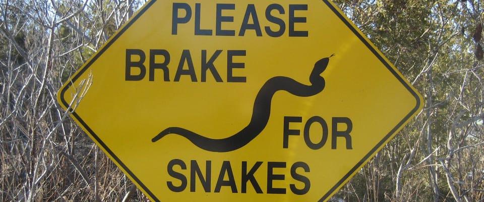 sign_snakea960x400
