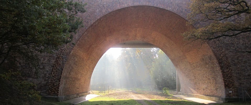 Wildlife underpass Brandenburg Germany960x400